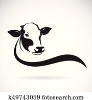 Vector of a cow head design on white background. Farm Animal.
