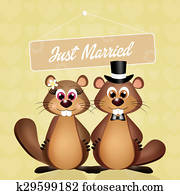 Wedding of marmots