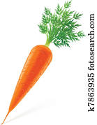 carrot with top