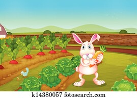 A bunny holding a carrot along the garden